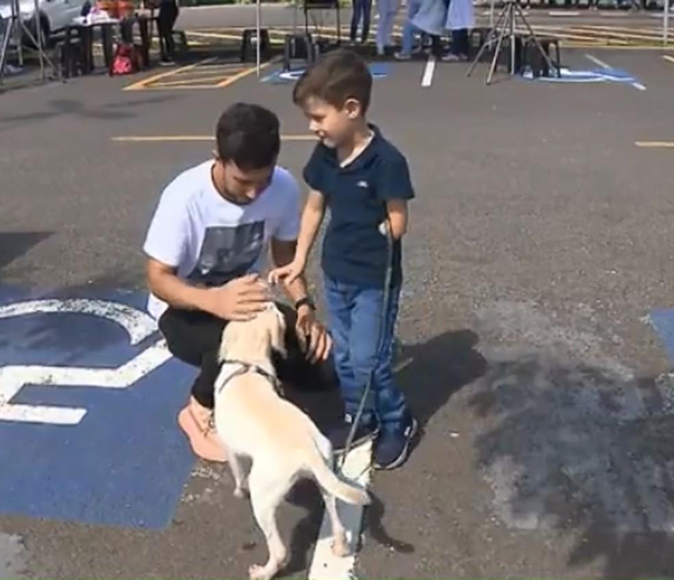 Criança com deficiência adota cachorro vira-lata sem pata, em Londrina — Foto: Reprodução/RPC