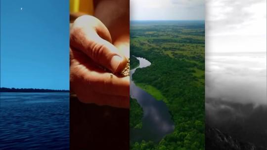 Cidades e Soluções comemora mês do meio ambiente com edições especiais