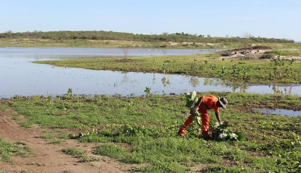 Servidor público faz limpeza no açude público de Cruzeta, que voltou a receber água no Seridó potiguar (Foto: Prefeitura de Cruzeta/Divulgação)