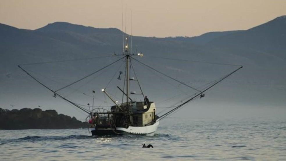 O aquecimento do oceano provoca desequilíbrio na cadeia alimentar marítima e prejudica a pesca — Foto: Getty Images/BBC