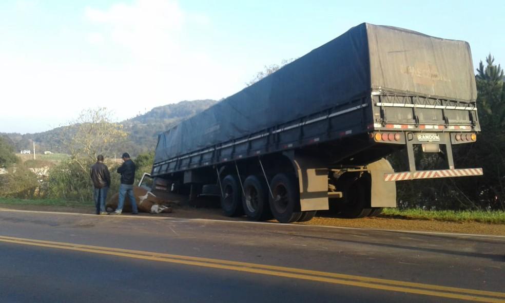 A PRE informou que busca identificar o dono dos bois que invadiram a pista e causaram acidente na PR-466, em Guarapuava (Foto: Celso Peterline)