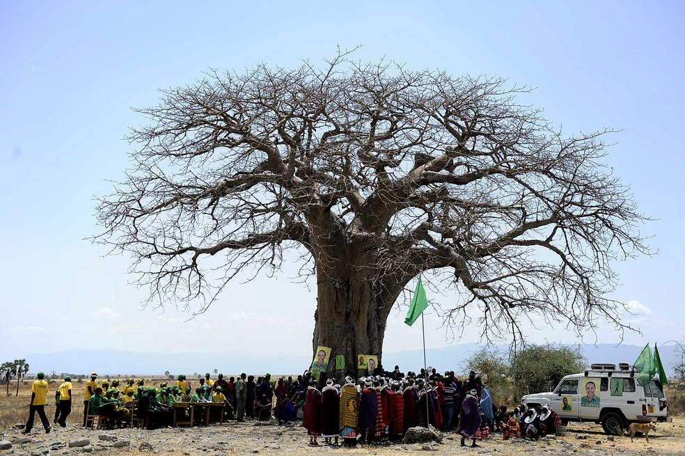 Foto de arquivo de 2010 mostra comunidade reunida sob baobá na Tanzânia. (Foto: Tony Karumba/AFP)
