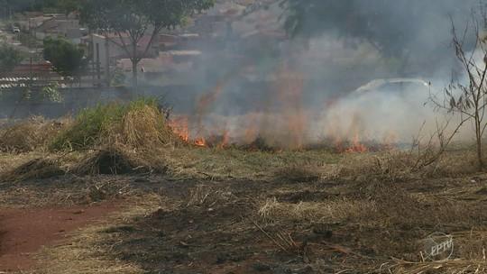 Multas por queimadas sobem 78% em Hortolândia; multa é de R$ 842 para terreno de até 500 m²