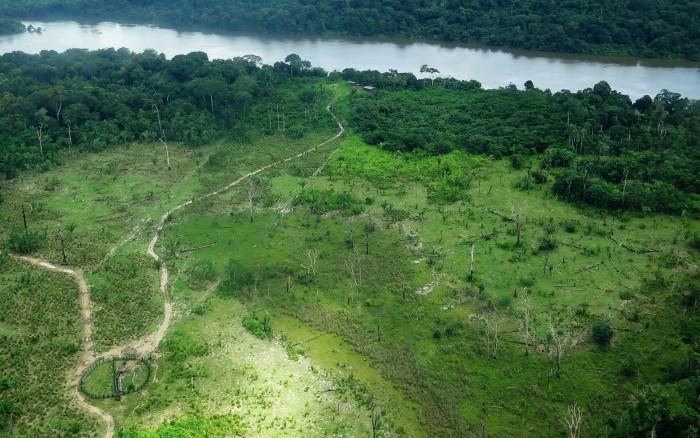 A Floresta Estadual do Iriri, no Pará, teve 100 hectares destruídos  (Foto: Juan Doblas/ISA)
