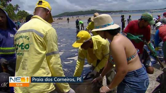 Especialistas dizem o que fazer em caso de contato com manchas de óleo  no mar e na areia