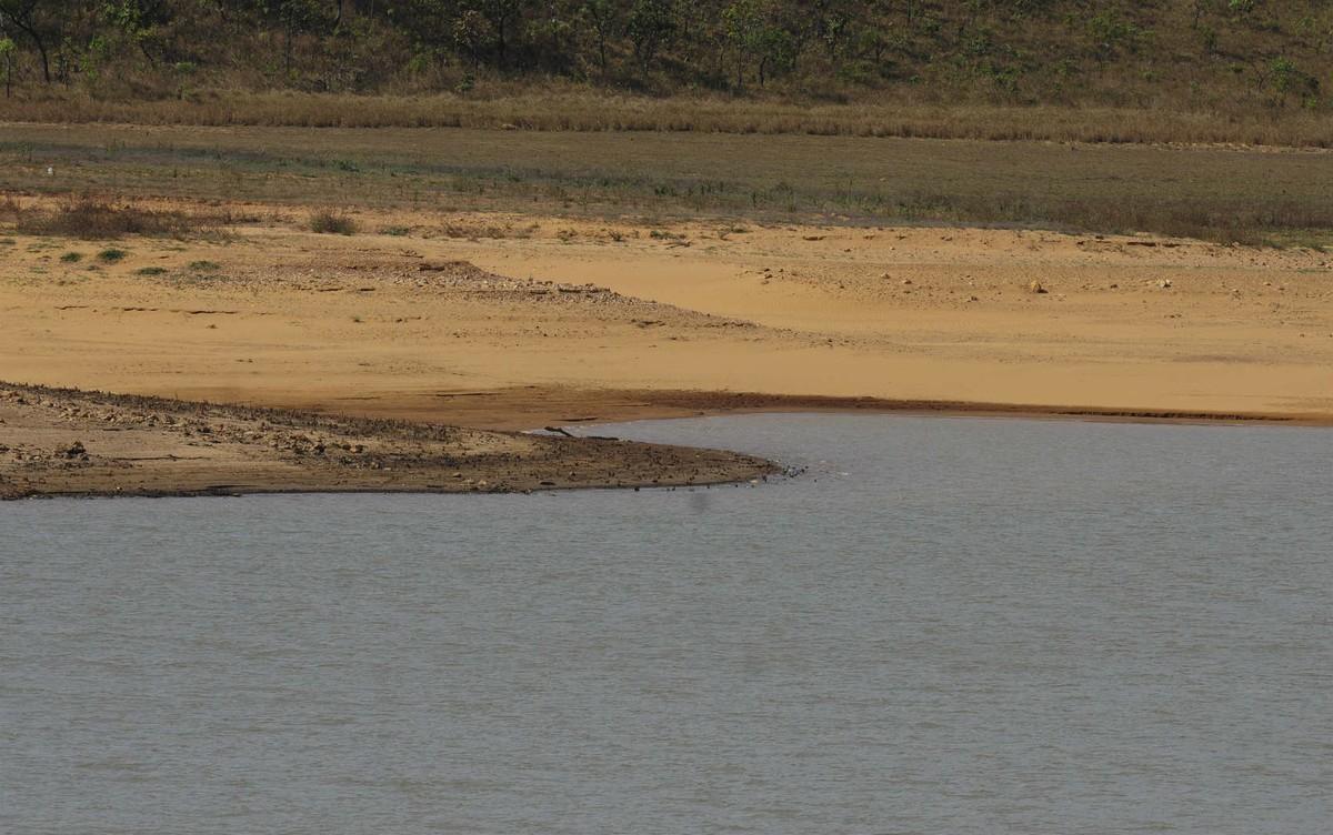 Manejo do Santa Maria até áreas do Descoberto traz economia de 8% na água, diz Caesb