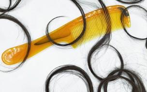 Calvície e queda de cabelo tem origens e efeitos distintos