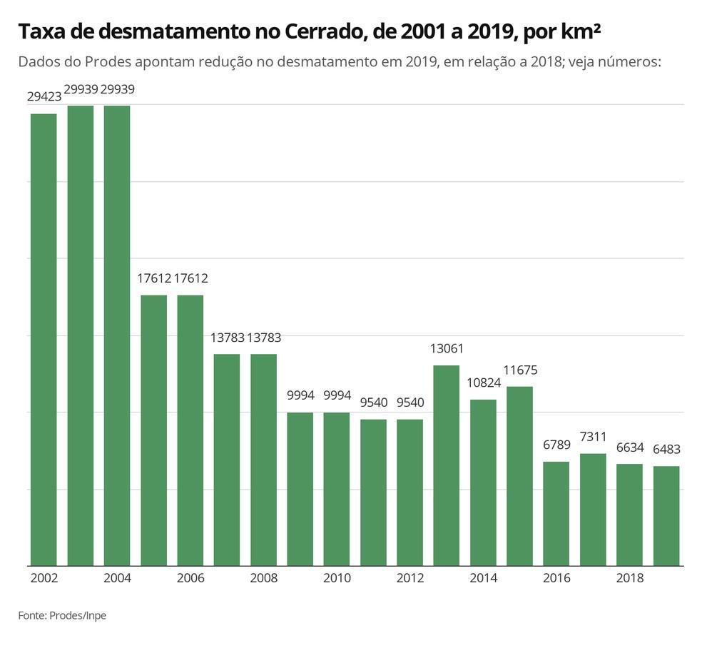 Dados do Prodes apontam queda de 2,26% no desmatamento no Cerrado de agosto de 2018 a julho de 2019  em relação ao mesmo período anterior. — Foto: Elida Oliveira/G1