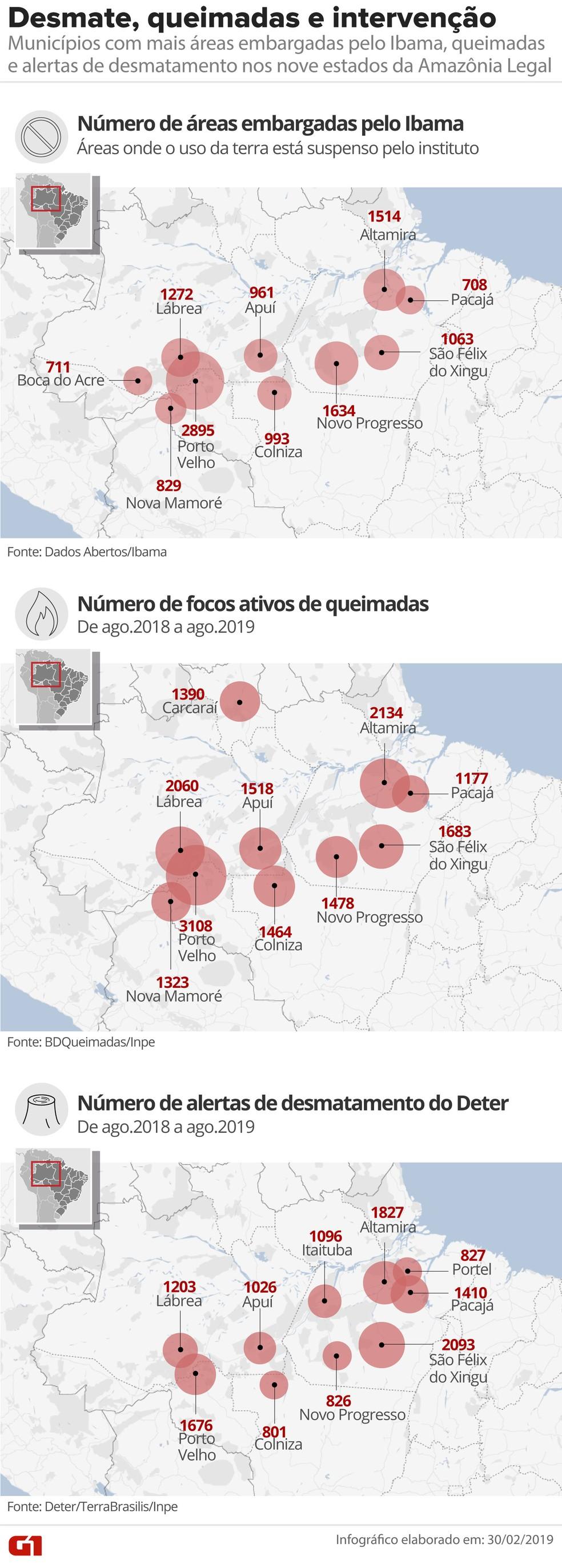 Dez cidades com mais embargos do Ibama na Amazônia Legal — Foto: Roberta Jaworski/G1