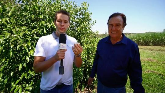 Pedro Leonardo conhece um pomar de frutas raras