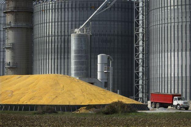 Procurador do Trabalho diz que faltam auditores para fiscalizar armazéns agrícolas em Mato Grosso (Foto: Reuters via BBC News Brasil)