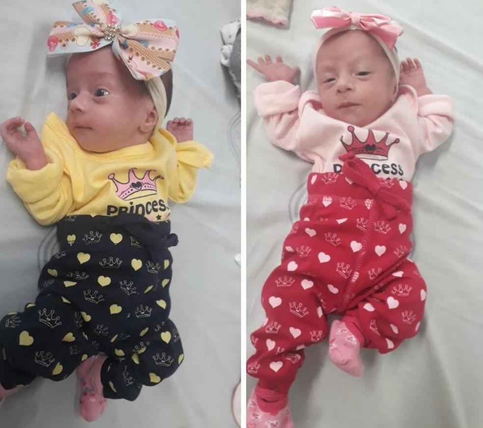 Gêmeas nasceram no 7º mês de gestação e estão sendo cuidadas pela avó em Guarujá, SP — Foto: G1 Santos