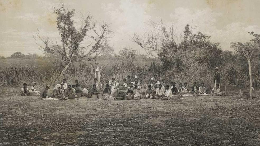 Imagem feita no Brasil em 1861 mostra o trabalho de escravizados no campo  (Foto: Frédéric Sorrieu/Biblioteca Nacional)