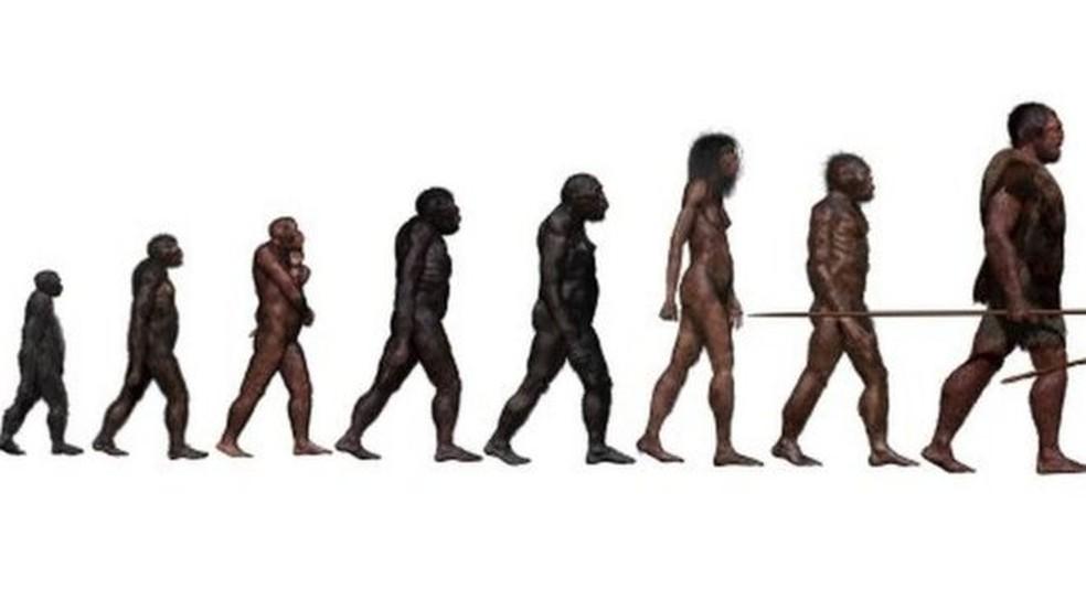 Resultado de imagem para Ancestral 'fantasma' do ser humano é descoberto na África