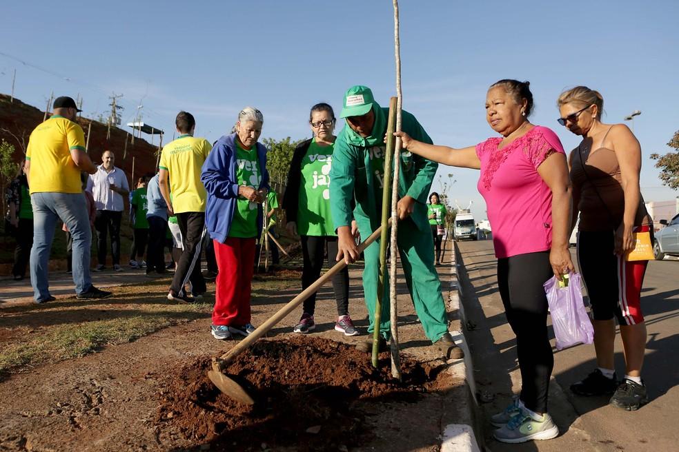 Plantio de árvores em Guarulhos (Foto: Fernando Pilatos/Globo)