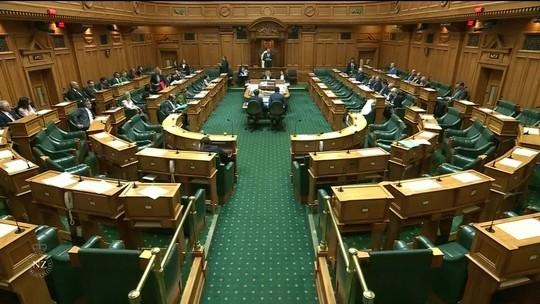 Parlamento da Nova Zelândia bane armas automáticas