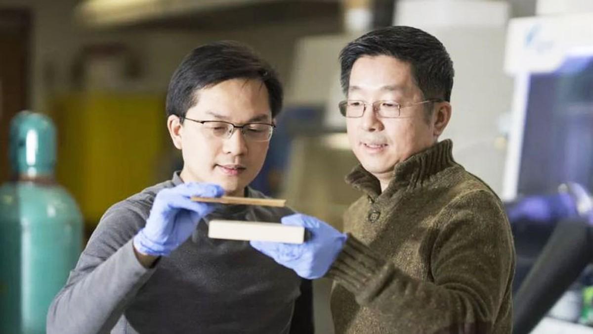 Pesquisadores criam supermadeira tão resistente que pode substituir até o aço