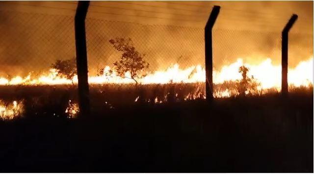 Incêndio atinge área de lavrado em campus da UFRR na zona Rural de Boa Vista