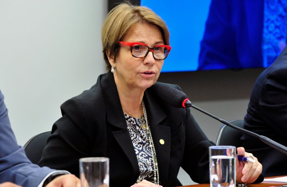 A deputada Tereza Cristina (DEM-MS), presidente da Frente Parlamentar Agropecuária — Foto: Luis Macedo / Câmara dos Deputados