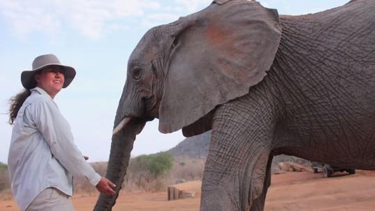 'The Wall': participantes que queriam ajudar santuário de elefantes comentam repercussão após o programa
