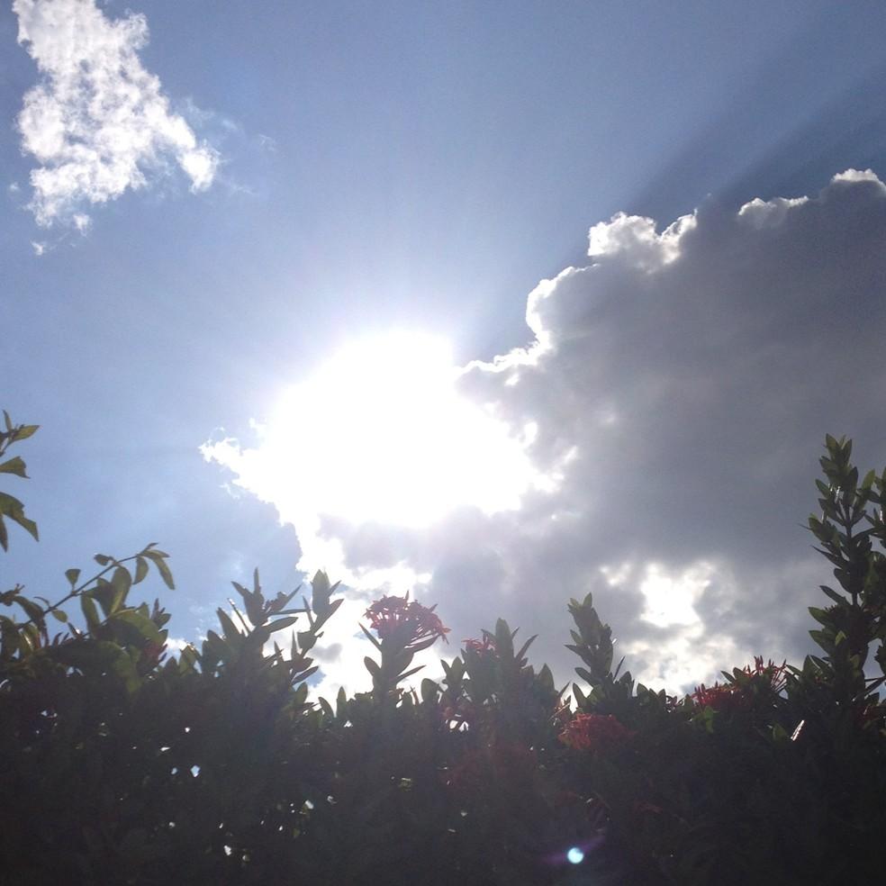 Temperatura elevada faz umidade relativa do ar baixar (Foto: Taísa Arruda/G1)