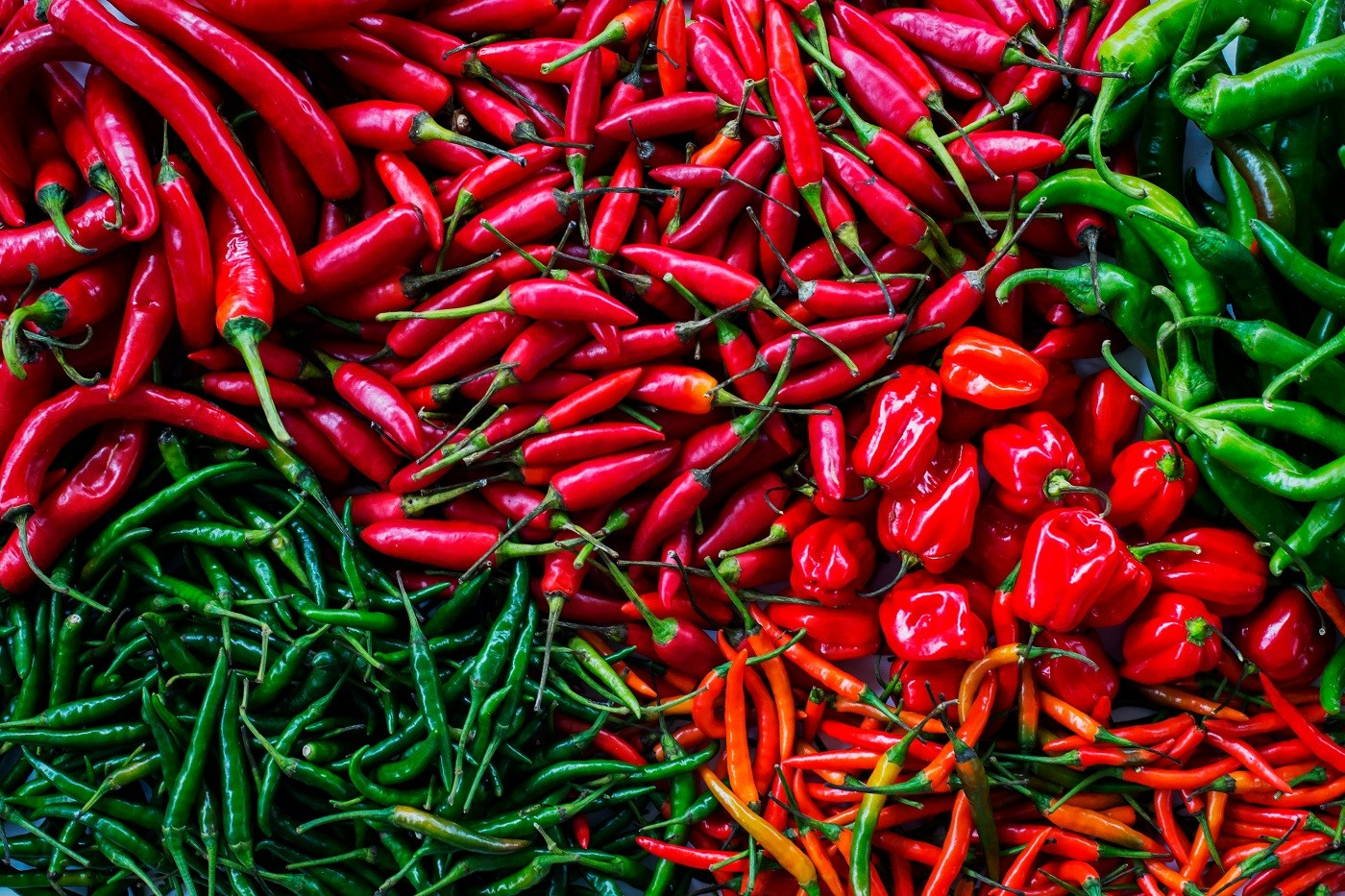 Varieties of chillies (Foto: Getty Images)
