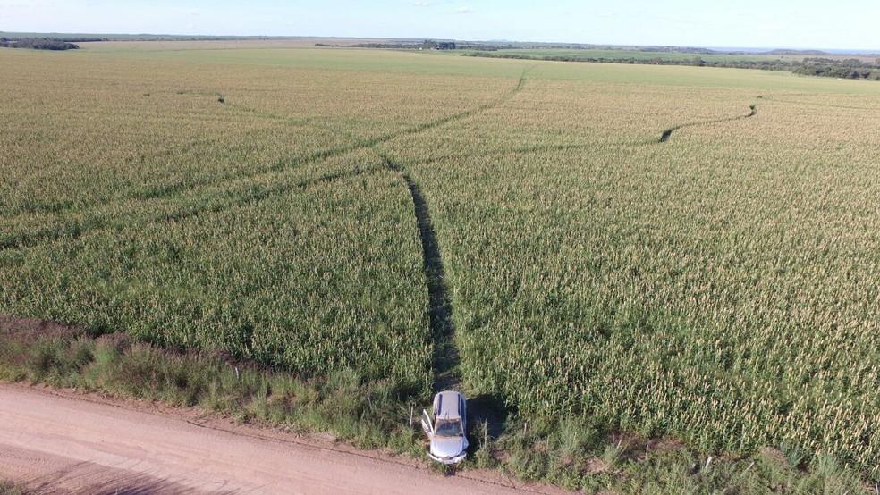 Carro usado dirigido por Éder foi encontrado em lavoura de milheto (Foto: Divino José/Arquivo Pessoal)