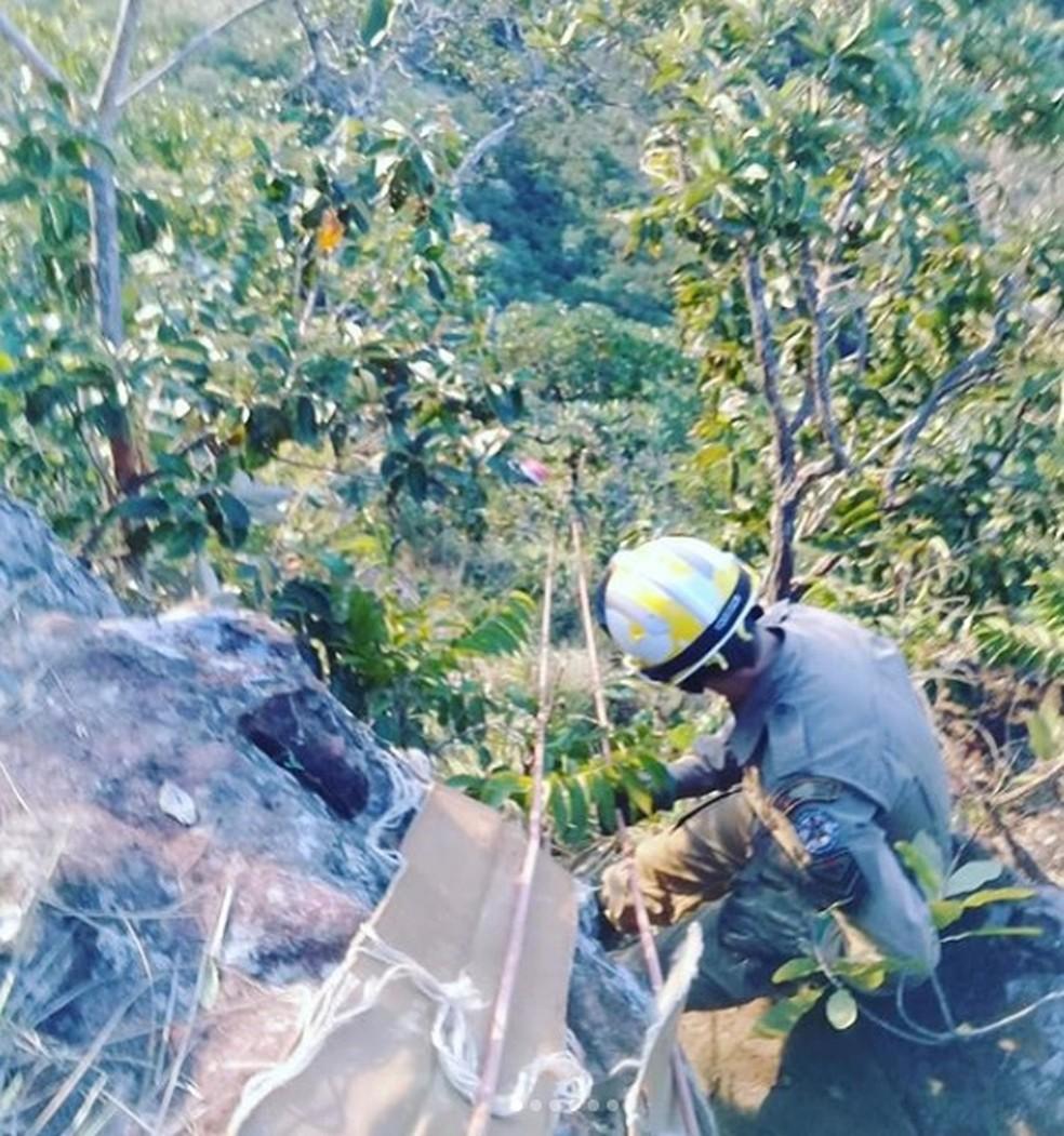 Vítimas ficaram presas por arbustos — Foto: Corpo de Bombeiros/Divulgação