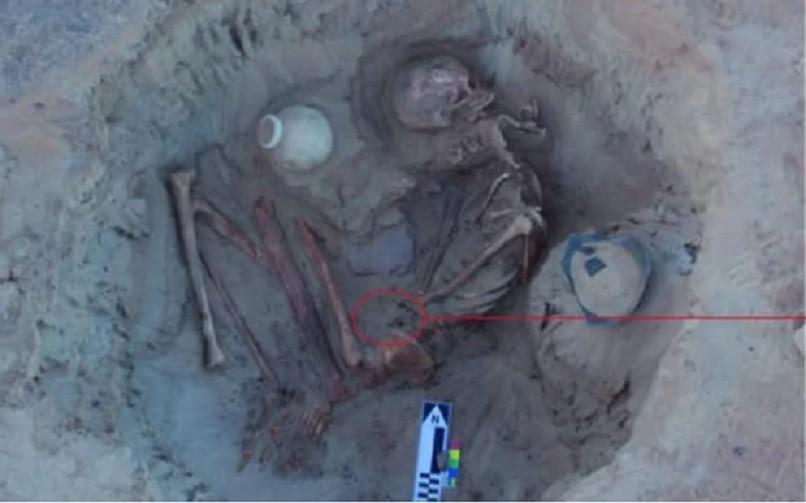Esqueleto de mulher é encontrado junto de feto (Foto: Divulgação/ Ministério das Antiguidades)