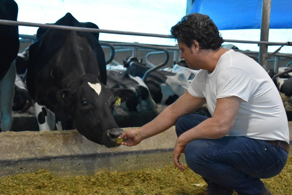 O produtor de leite Roberto Jank Jr. — Foto: Fabiana Assis/G1