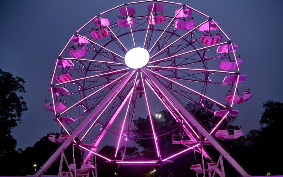 Roda gigante iluminada de rosa foi montada no Parque do Ibirapuera (Foto: Divulgação/Instituto Avon)