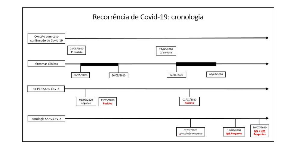 Cronologia apresentada no estudo da USP Ribeirão Preto, SP — Foto: Reprodução/USP