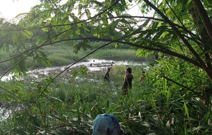 Menina de 13 anos desaparece durante banho em igarapé em Pracuúba, no AP