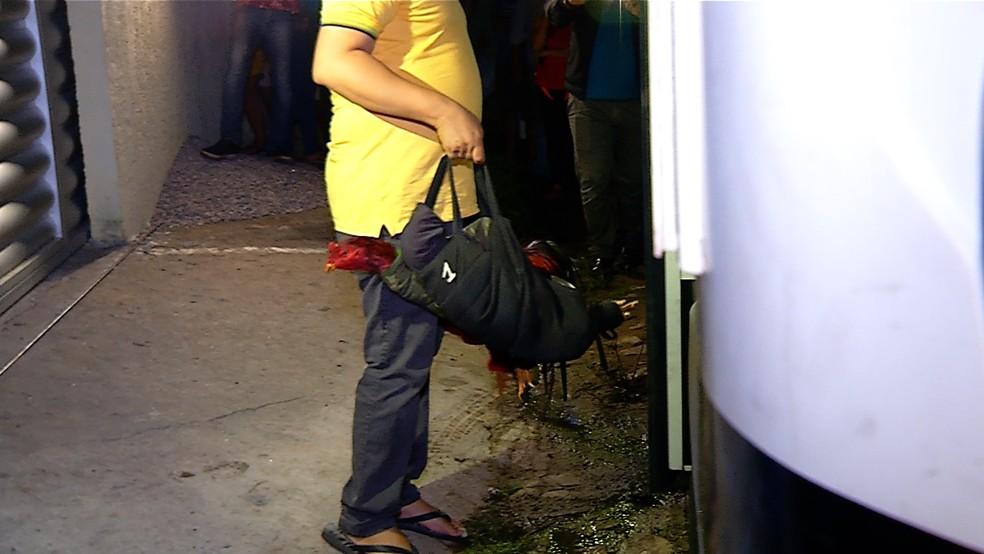Ação da polícia flagrou rinha de galo em Macaíba, Grande Natal, na noite desta quinta (6). Ringues utilizados para as brigas foram vistos dentro da casa — Foto: Reproodução/Inter TV Cabugi