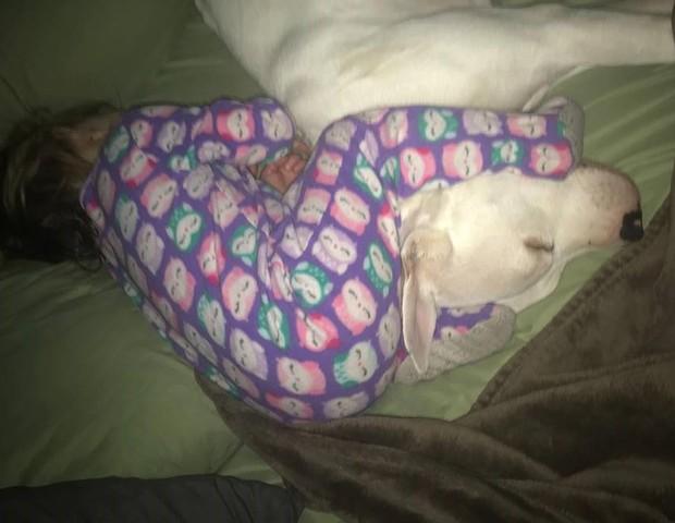 O pitbull ajuda Adalynn, 4, a dormir melhor (Foto: Reprodução Facebook)