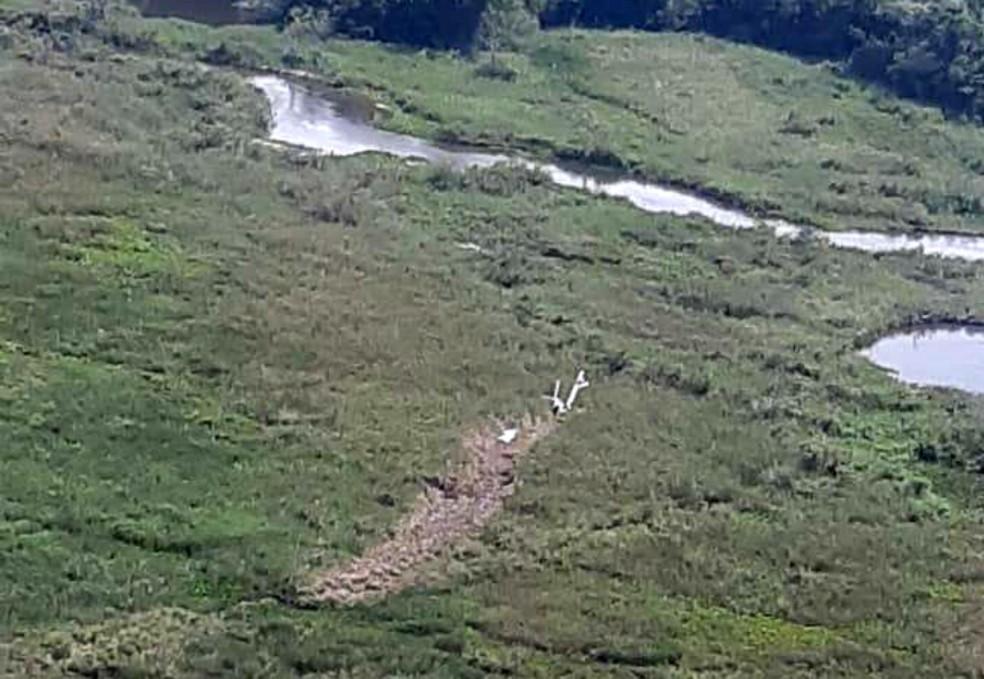 Local da queda do avião fica na área rural do município de Naviraí, MS — Foto: Polícia Civil/Divulgação
