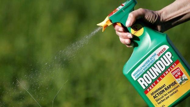 O glifosato é um dos herbicidas mais usados no mundo (Foto: Reuters/BBC News)