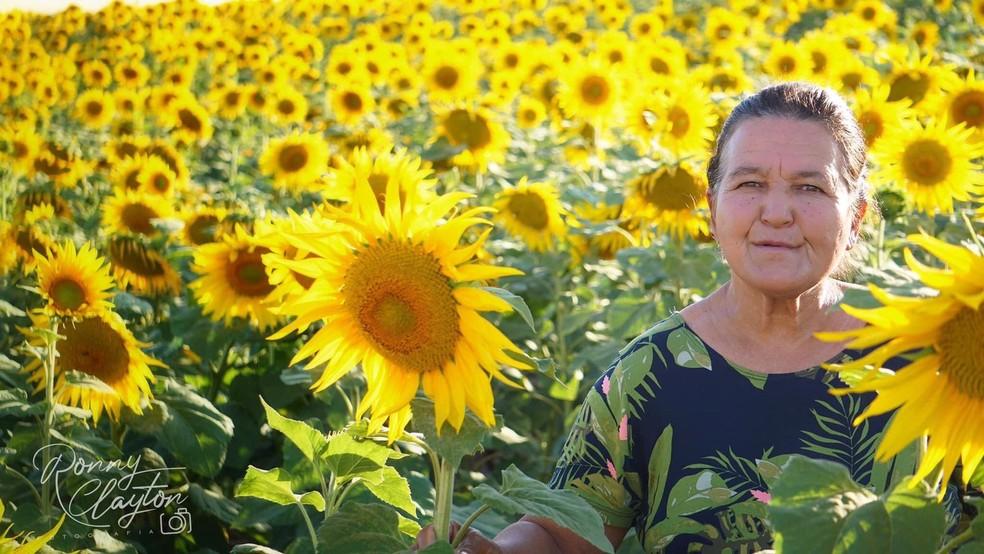 Idosa posa em meio à plantação de girassóis em Cerquilho — Foto: Ronny Clayton Fotografia/Divulgação