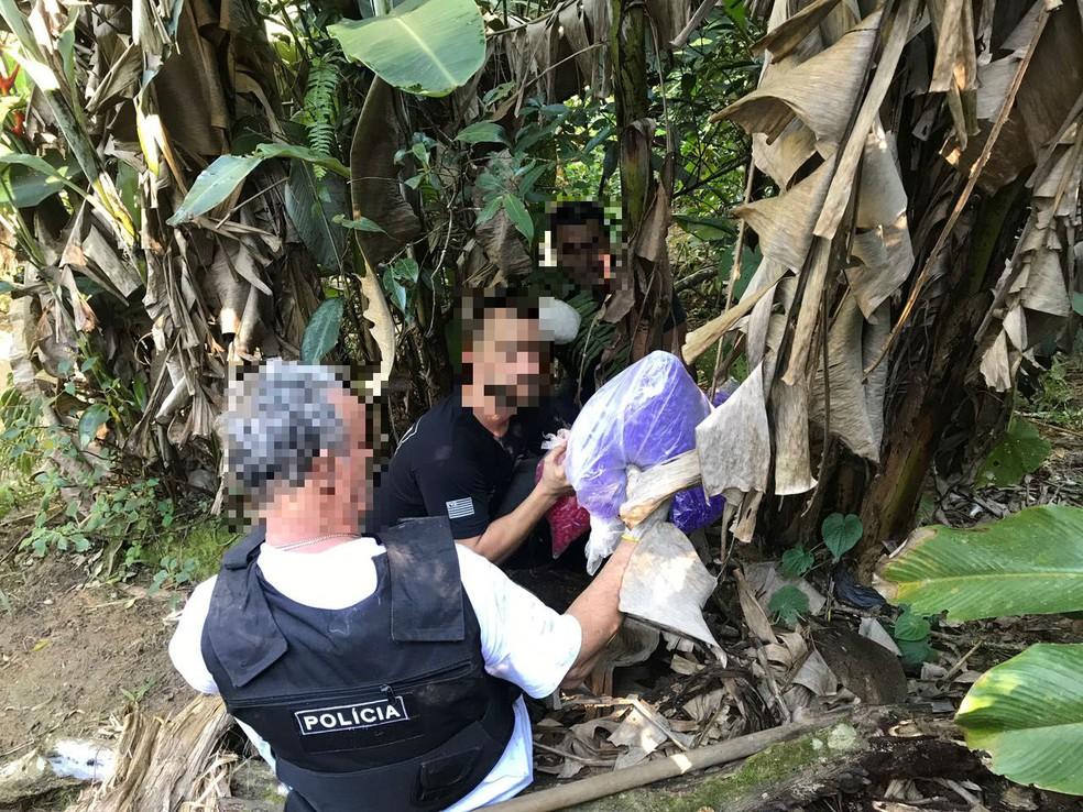Material foi encontrado escondido em meio à mata fechada em morro de Guarujá, SP (Foto: Divulgação/Polícia Civil)