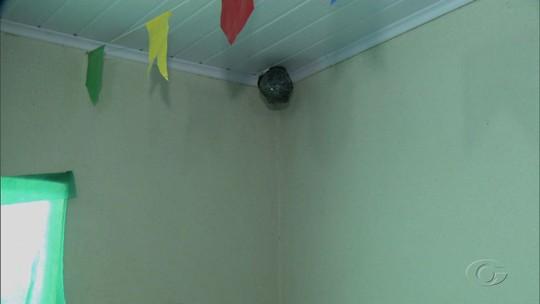 Justiça Eleitoral determina desligamento de câmeras de sala de votação em Pindoba, AL