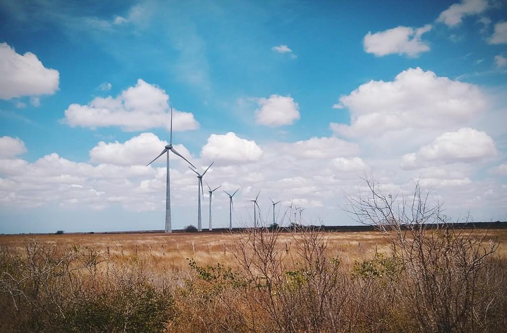 Parque eólico próximo ao Litoral Norte do RN — Foto: Igor Jácome/G1