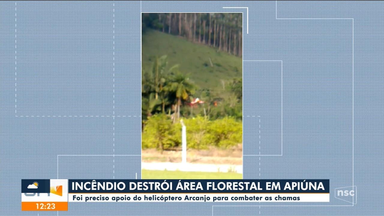 Incêndio destrói área florestal em Apiúna