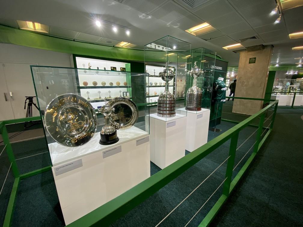 Taças da Libertadores na nova sala de troféus do Palmeiras — Foto: Palmeiras