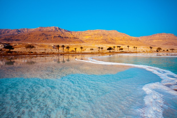 Dead Sea seashore with palm trees and mountains on background (Foto: Getty Images/iStockphoto)