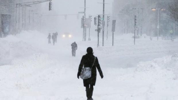 Nos EUA, frio extremo causa grande prejuízo a produtores rurais