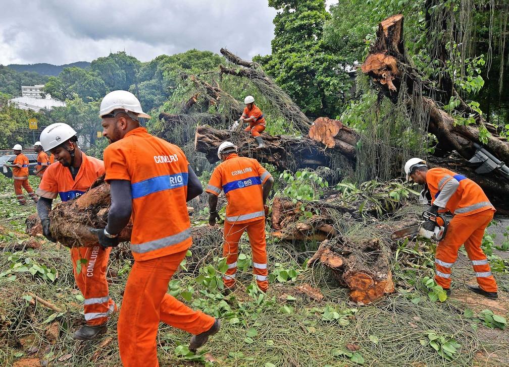 Funcionários da Comlurb removem partes de árvore derrubada pelo temporal à beira de um canal na Gávea, zona sul do Rio — Foto: Carl de Souza/CDS/AFP