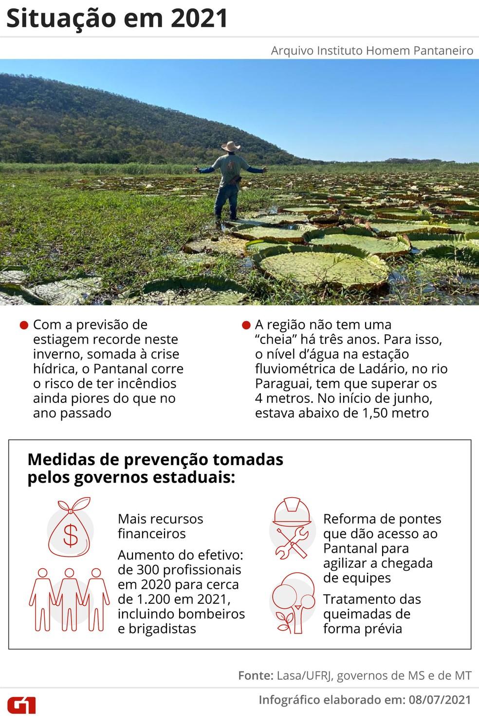 Situação do Pantanal em 2021 — Foto: Elcio Horiuchi/G1