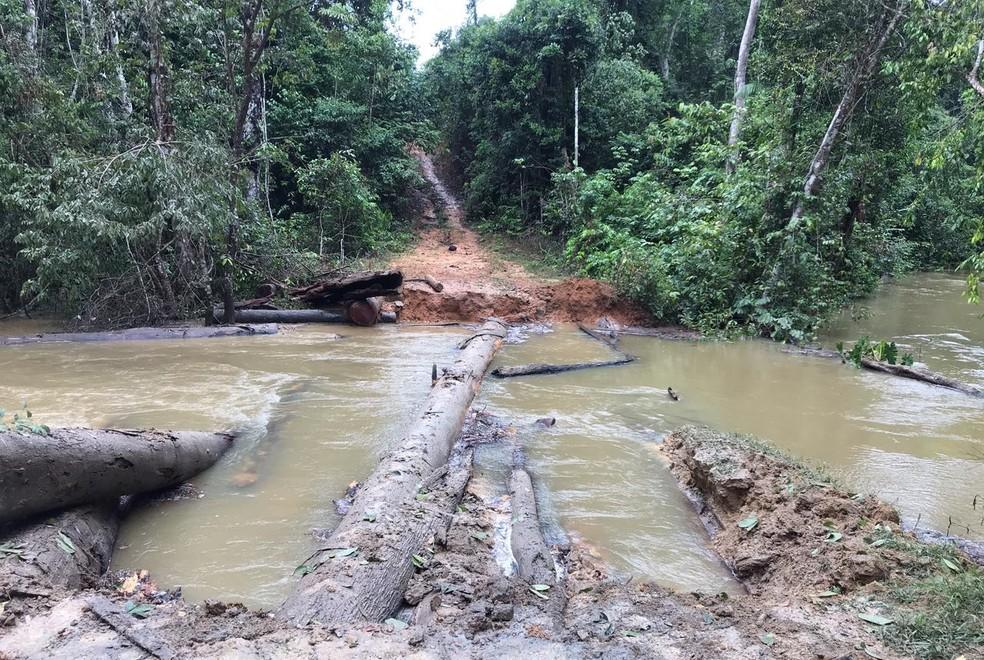 Operação na Terra Indígena Karipuna em Rondônia  — Foto: PF/Divulgação