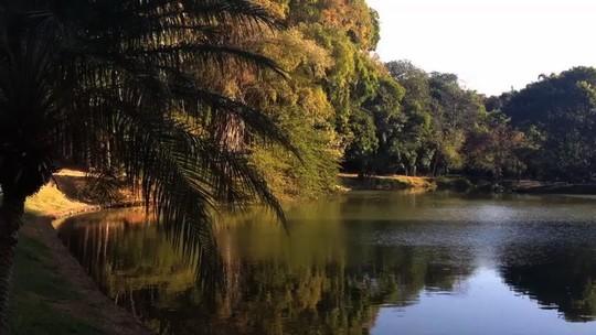 Baixa umidade do ar deve continuar neste mês em Goiás, alerta Inmet