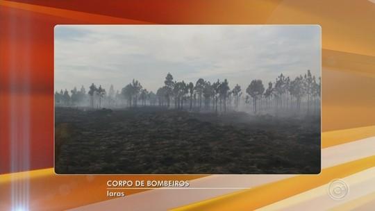Incêndio atinge área de vegetação e mobiliza bombeiros em Iaras